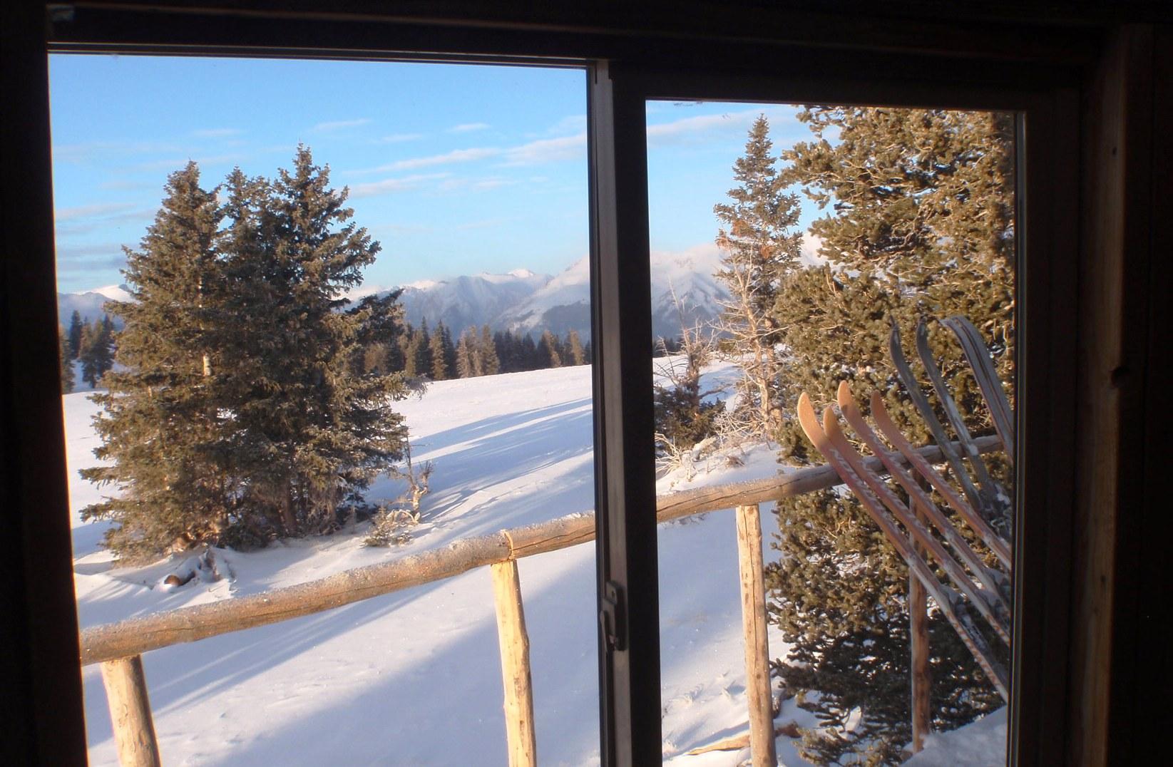 Colorado Trail Friends window
